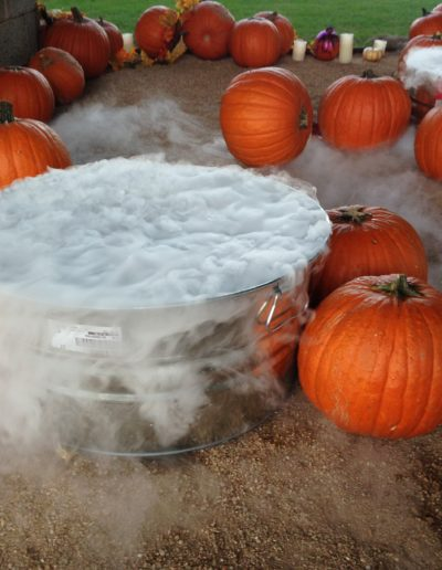 Halloween Theme (10)